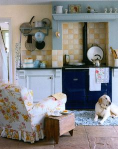 armchair + woodstove, yellow + blue, checks + flowers, and a dog. sigh.
