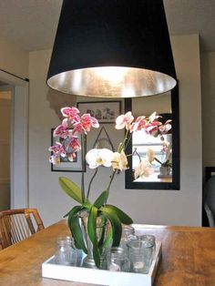 Silver-leaf the inside of an oversize shade ($29.99).