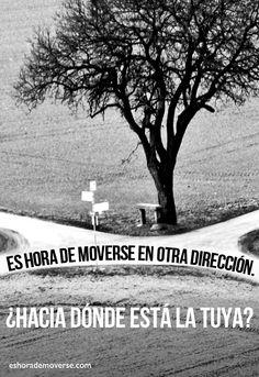 #eshorademoverse