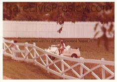 It is said that Lisa got in her golfcart and just road around the grounds of Graceland -- Aug 1977 Elvis Presley Memories, Elvis Presley House, Elvis Presley Graceland, Lisa Marie Presley, Book Projects, Daddys Girl, Memphis, Levis, Rock N Roll