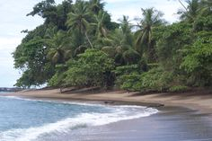 One of the many beaches where the jungle meets the sand in Costa Rica