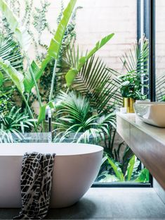 Tropical bathroom theme will work for adults and children. Tropical decor is a great way to brighten up the small … Tropical Bathroom, Tropical Decor, Tropical Garden, Tropical Plants, Garden Bathroom, Budget Bathroom, Bathroom Inspiration, Garden Inspiration, Bath Window