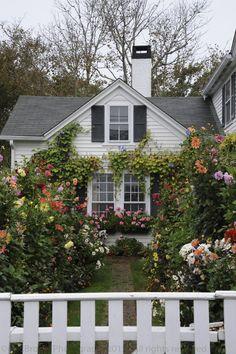 Gorgeous flower-filled cottage garden in Edgartown, Martha's Vineyard.