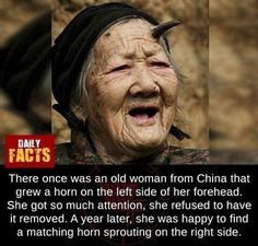 Creepy Facts, Wtf Fun Facts, Odd Facts, Random Facts, Scary, Creepy Stories, Cute Stories, Interesting Facts About World, Fascinating Facts