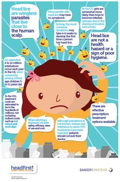 Head Lice | Headfirst! Expert Advice on Lice