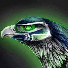 Seahawks!!!