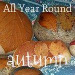Fun Fall activities for kids!