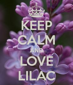 'KEEP CALM AND LOVE LILAC' Poster