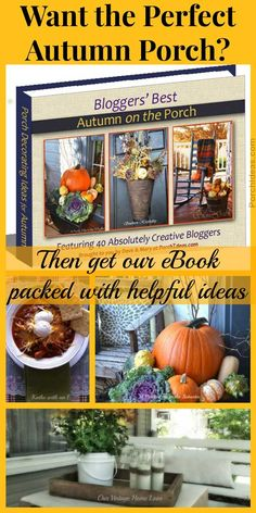 Forty generous bloggers participated in our Autumn Porch Decorating Ideas eBook. Their fall decorating ideas are easy to follow, fun to see and both festive as well as classy. If you want a perfect autumn porch, then our picture-intensive eBook is sure to please!