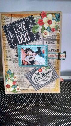 Raining cats an dogs book box