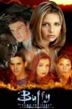 Check out Buffy The Vampire Slayer
