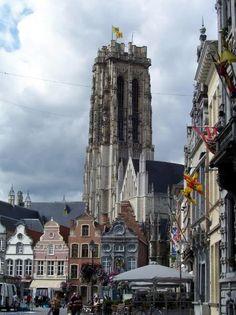 Officiele en nuttige informatie, lokaal adverteren in Mechelen, , Walem, Heffen, Hombeek, Leest en Muizen via Het Prikbord van Belgie. Weet je een interessante site die je zelf zou toevoegen, stuur een mail naar mailto:info@climbingbvba.be