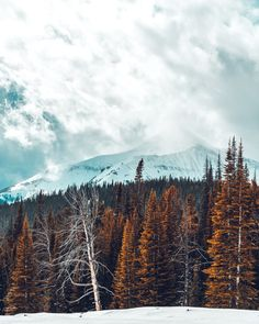 Download this photo in Big Sky, United States by Jonathan Knepper (@jknepp)