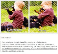 (gif set) Sammy with Puppies. At first it's adorable. Then it's just really, really sad.