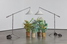 David Kordansky Gallery- evan holloway