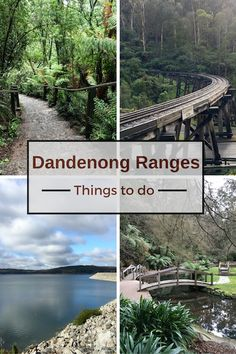 My list of top things to do and see in the Dandenong Ranges. A great destination for nature lovers, only one hour drive from Melbourne CBD.