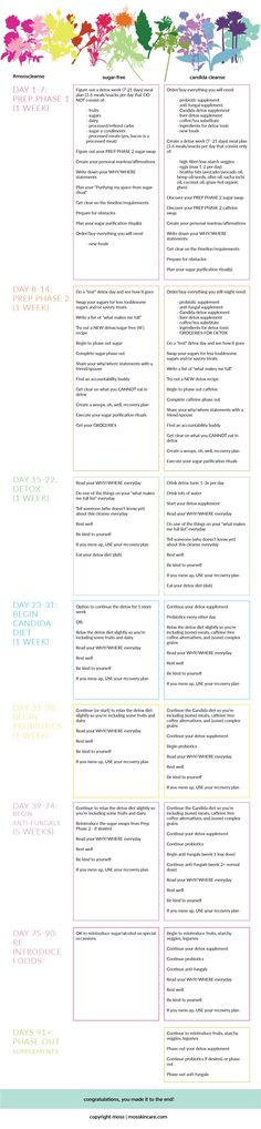 Candida Cleanse Overview                                                                                                                                                                                 More
