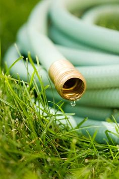 Before freezing temperatures cause ice to form and burst your hoses, empty them, then coil and store for winter.   Photo: Jamie Grill/Photographer's Choice/Getty   thisoldhouse.com