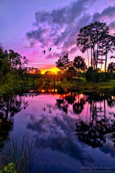 Purple sunset over Riverbend Park in Jupiter FL! -- We Live In A Beautiful World Beautiful Sunset, Beautiful World, Beautiful Places, Amazing Places, Beautiful Gifts, Beautiful Scenery, Wonderful Places, Beautiful Flowers, Purple Sunset