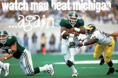 Go to the Michgan vs MSU game @ Spartan Stadium.