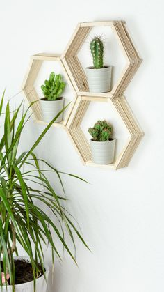 DIY Wandregal in Wabenform basteln – tolle, günstige DIY Zimmer Deko Idee aus E… DIY wall shelf in honeycomb shape – great, cheap DIY room decoration idea from ice sticks. With this shelf, you can put all your small plants… Continue Reading → Diy Tumblr, Diy Décoration, Easy Diy, Diy Crafts, Decoration Bedroom, Diy Room Decor, Room Decorations, Honeycomb Shape, Diy Zimmer