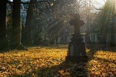 Tower Hamlets, Dylan Thomas, Parks, All Souls Day, Pray For Us, Activities To Do, Memento Mori, Higher Education, Solar Power