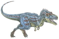 Daspletosaurus torosusi - a tyrannosaur dinosaur