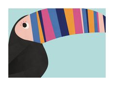 Stripy Toucan Wall Art Prints by Catherine Culvenor | Minted