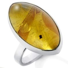 Amber and silver ring. I don't wear gold....its gotta be silver or nuthin', with any stone or gemstone, or silver, by itself.