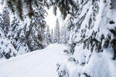 Winter am Katschberg Berg, Snow, Outdoor, Summer Vacations, Pictures, Outdoors, Outdoor Games, Outdoor Living, Eyes