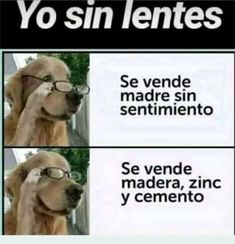 ( ͡° ͜ʖ ͡°) - Trot Tutorial and Ideas Funny Spanish Memes, Spanish Humor, Meme Pictures, Funny Phrases, Pinterest Memes, Best Memes, Funny Images, Kawaii Anime, I Laughed