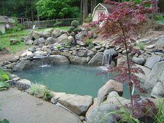 petit  et moderne bassin  de  jardin avec de grandes pierres