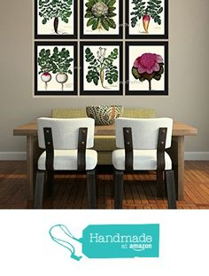 Vegetable Print Set of 6 Prints Antique Beautiful Radish Cabbage Green Red Vegeterian Garden Nature Home Room Decor Wall Art Unframed from LoveThePrint https://smile.amazon.com/dp/B018SW7L5I/ref=hnd_sw_r_pi_dp_D5AsybYRZ6Y3R #handmadeatamazon