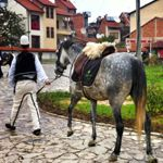Albania country information Albania Country, Country Information, Horses, Animals, Clothes, Outfits, Animales, Clothing, Animaux