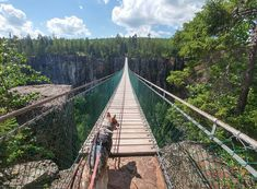 Ontario's Most Scenic Suspension Bridge Reopens This Spring 2018 - Narcity Ontario Camping, Ontario Travel, Places To Travel, Places To See, Travel Destinations, Weekend Trips, Day Trips, Canadian Travel, Canadian Rockies