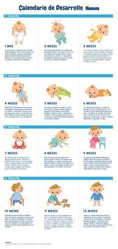 cambios fisicos del bebe en los primeros meses - Buscar con Google  Descubre más de los bebes en somosmamas.