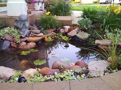 This sweet pond sits just outside the front door.