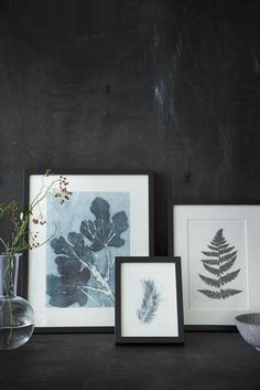Botanical Prints By Pernille Folcarelli — Impressions Botaniques, Vintage Botanical Prints, Leaf Art, Illustrations, Photo Galleries, Blade, Creations, Wall Decor, Wall Art