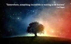 """Somewhere something incredible is waiting to be known."" - Carl Sagan via imgur #Quotation #Carl_Sagan #Discovery"
