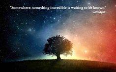 """Somewhere something incredible is waiting to be known."" - Carl Sagan"