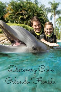 Discovery Cove discounts for Florida Residents! Swim with #dolphins! #dolphinSwim