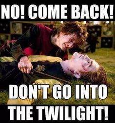 Don't go into the twilight! Harry potter meme