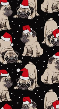 Winter Wallpaper, Christmas Wallpaper, Pug Puppies, Pugs, Merry Christmas To You, Cards, Tela, Wall Papers, Pug Dogs