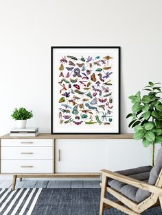 Poster of Entomology watercolor by Martha Iserman aka Big Red Sharks Studios. Images of insects and bugs. Sharks, Bugs, Insects, Studios, Illustration Art, Watercolor, Unique Jewelry, Handmade Gifts, Artwork