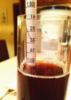 Stuck Beer Fermentation Hydrometer Reading