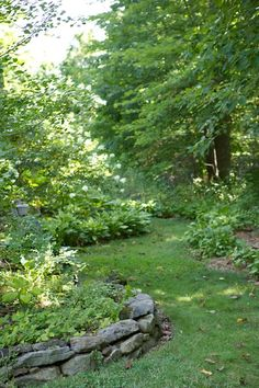 shady garden with curved grass walkway