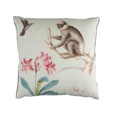 Discover the Sanderson Capuchins Monkey Cushion - 50x50cm - Sea Green at Amara