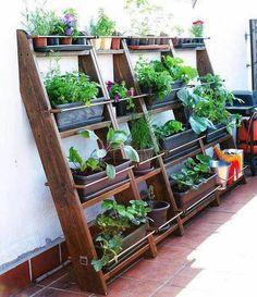 """Queridos amigos,   Ainda no seguimento da Jardinagem Low Cost que foi o tema da """"minha"""" Revista Jardins de JUnho e já com os workshops que ..."""