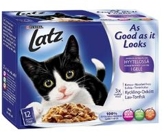 Kaikki Latz kissanruoat HYYTELÖSSÄ maistuvat tällä hetkellä kissoille.