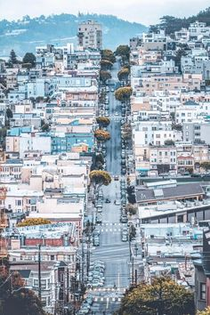 Top 10 Things To Do In San Francisco! Planning a trip to San Francisco and looking for all the must see places to visit? Whether your vacation lasts one day or one week here are some of the top things you can't miss! Click through to www.avenlylanetravel.com to read more on the best food, restaurants, shopping, taking travel photos at Lombard Street, beaches, the Golden Gate Bridge, and so much more! #sanfrancisco #USA #california #usatravel #traveltips #wanderlust #avenlylane…